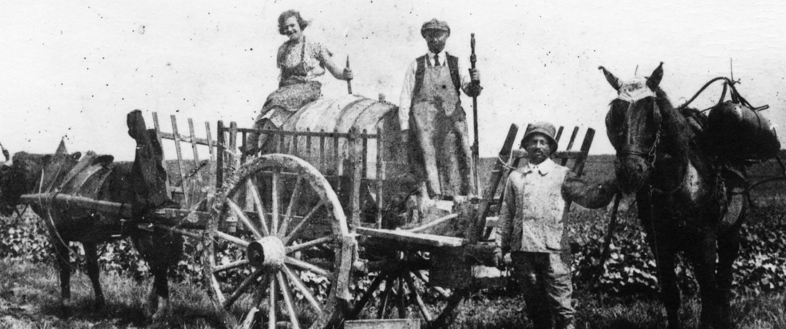 Une histoire de famille depuis 1874