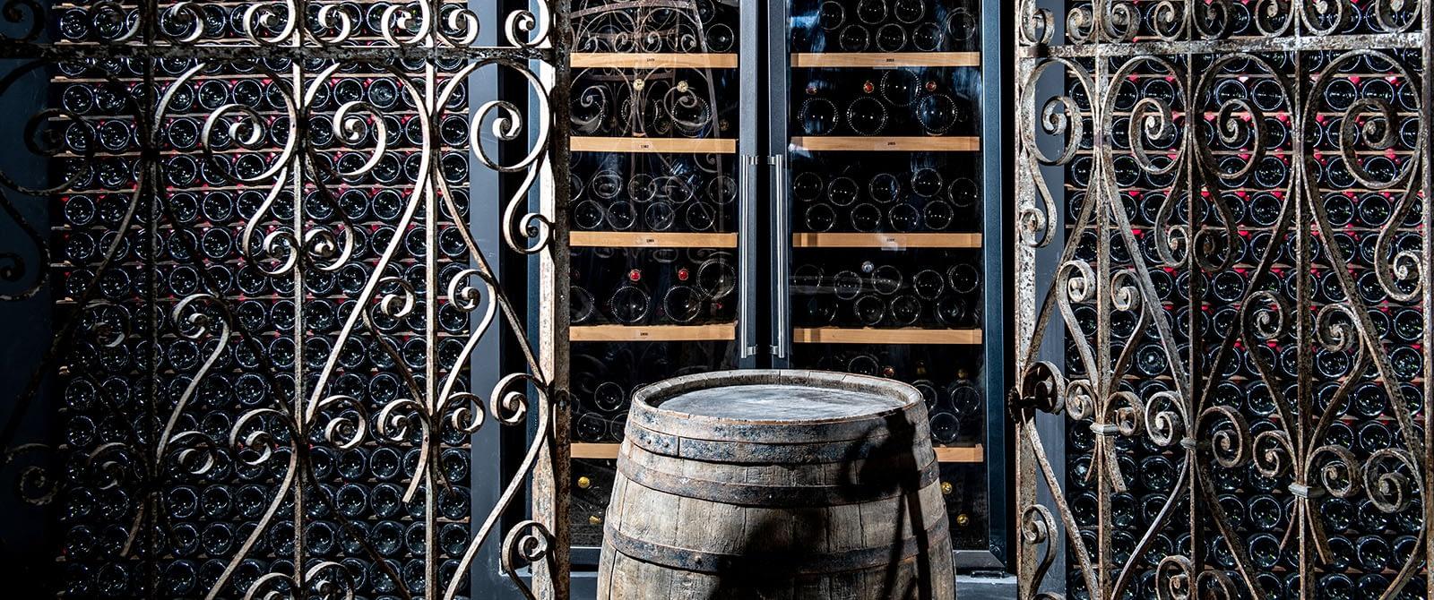 Le vignoble de Sacy